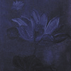 Орилия