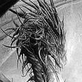 Dragon Sfayrat