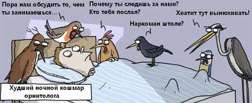 http://static.diary.ru/userdir/4/2/4/0/424077/82574867.jpg