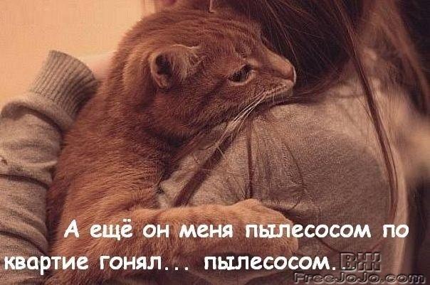 http://static.diary.ru/userdir/4/2/7/7/427797/77627619.jpg