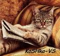 KoSHka-VS