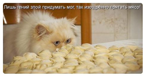 http://static.diary.ru/userdir/4/8/3/8/483888/44118197.jpg