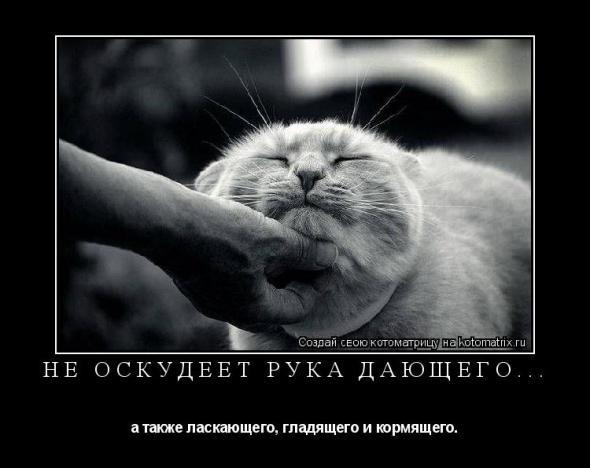 http://static.diary.ru/userdir/4/8/6/1/486129/61753476.jpg