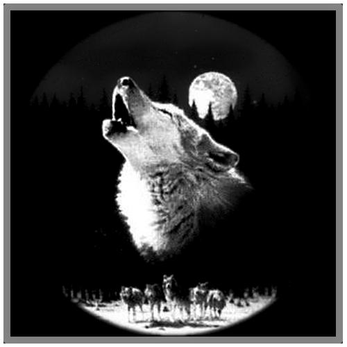 схемы для вышивки волки