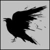 WTF Crows Zero 2015