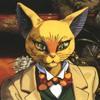 Gatto Orsino