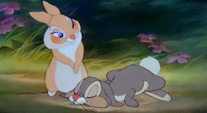 Зайчиха целует зайца гиф