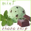 Mint Flei