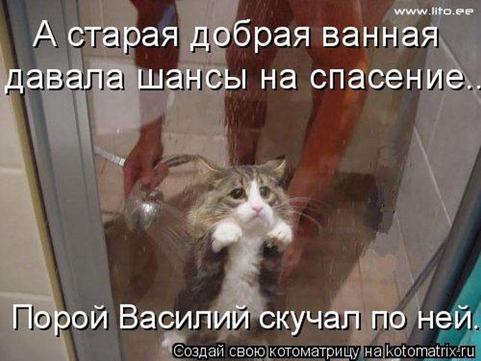 http://static.diary.ru/userdir/5/9/5/5/595548/70237176.jpg