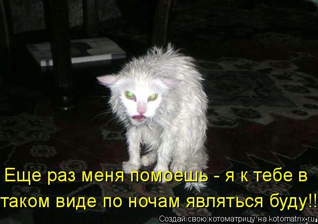 http://static.diary.ru/userdir/5/9/5/5/595548/70237179.jpg