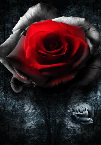 Алая кровь потекла по ее груди...