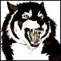 Dark She-wolf