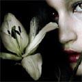Lily Derill
