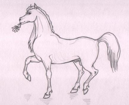 картинки фурри лошади