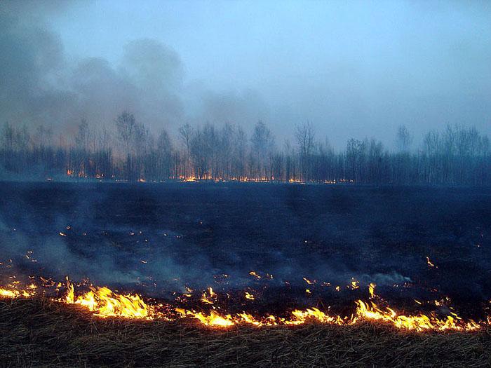 социальных тактика выжженной земли: киев тушит свет на украине Bask
