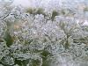 Мой балкон зимой 2
