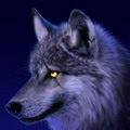 ledi-wolf