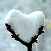 Ледяное сердце тоже может любить...