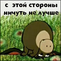 llsonya