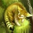 Чудо кошачьего племени