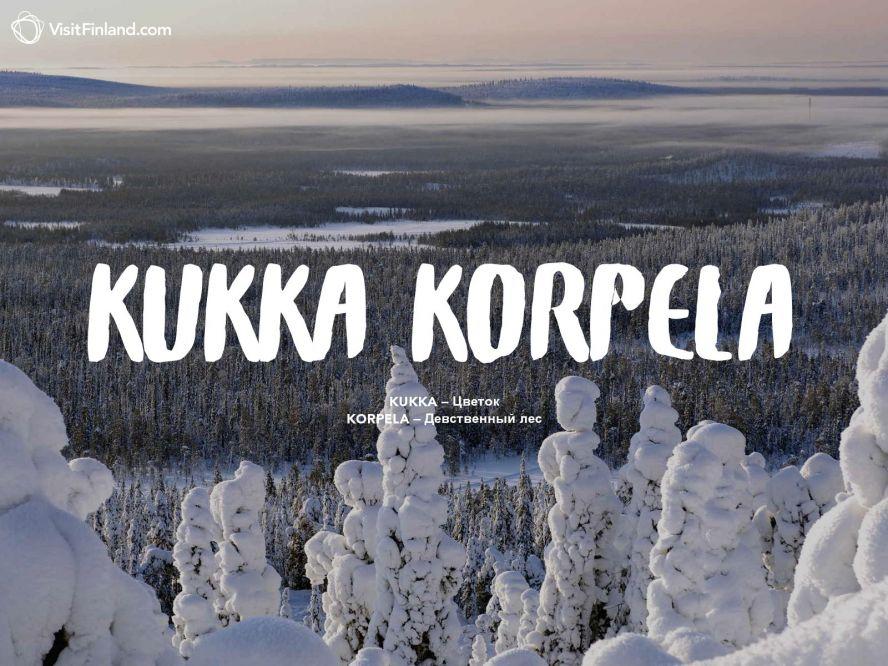 определитесь: по финский имя иван термобелья Craft