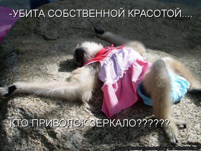 http://static.diary.ru/userdir/7/3/6/8/7368/38077444.jpg