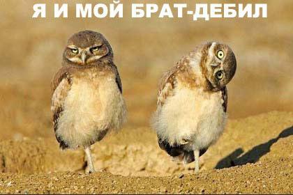 http://static.diary.ru/userdir/7/7/2/4/77247/17621935.jpg