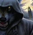 -Волк-