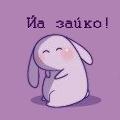 Сиреневый кроль любит моркву