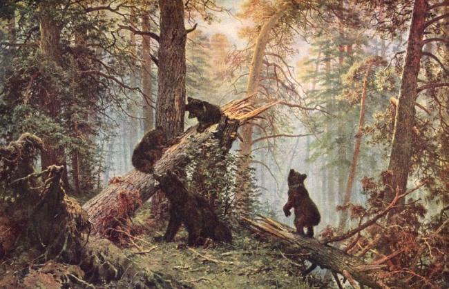 А может это не кабан был а медведь? vesel.