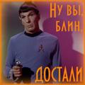 Vipera_Berus89