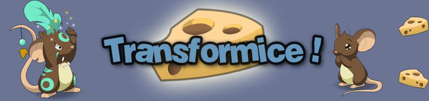 Как сделать красивую карту в трансформайс