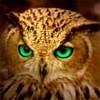 Angel Eyes*