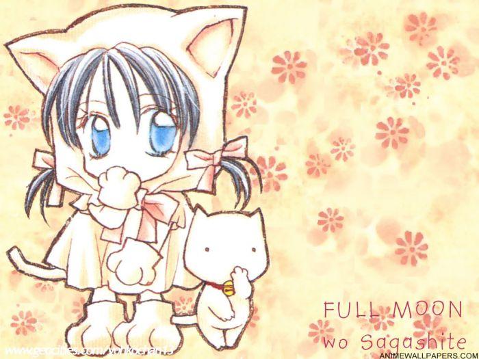 аниме котята картинки: