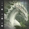 ..Silver Dragon..