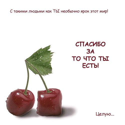http://static.diary.ru/userdir/8/8/9/3/889369/34984432.jpg