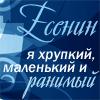 Мятный_Пряник
