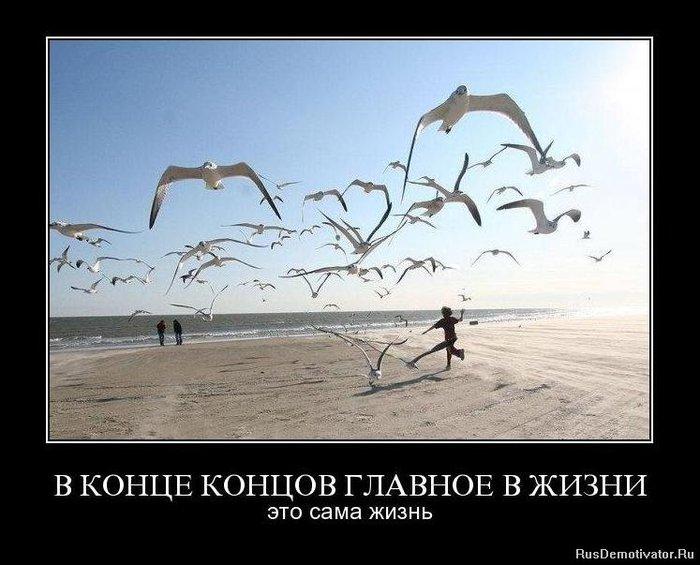 И радость, и счастье. - Страница 13 70504809