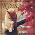 Мартовский кот - Джонни - 5