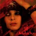 Molochai