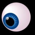Синемордый