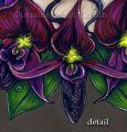 Orchid.ua