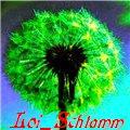 Loi_Schtamm