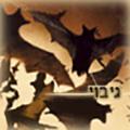Whitegold_Dragon