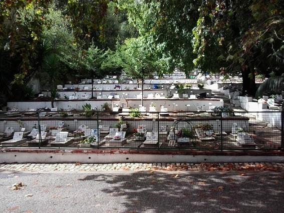 Кладбище животных в Лиссабоне, общий вид
